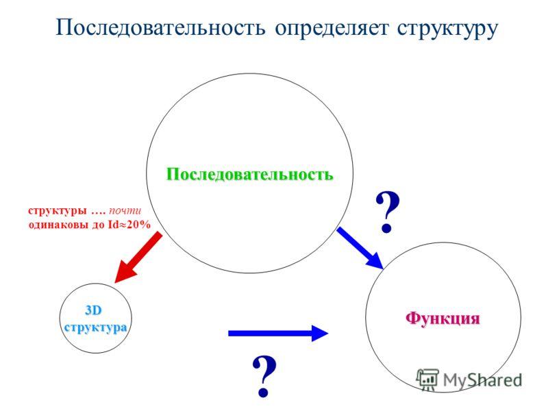 Последовательность определяет структуру Функция 3Dструктура ? ? структуры …. почти одинаковы до Id 20% Последовательность