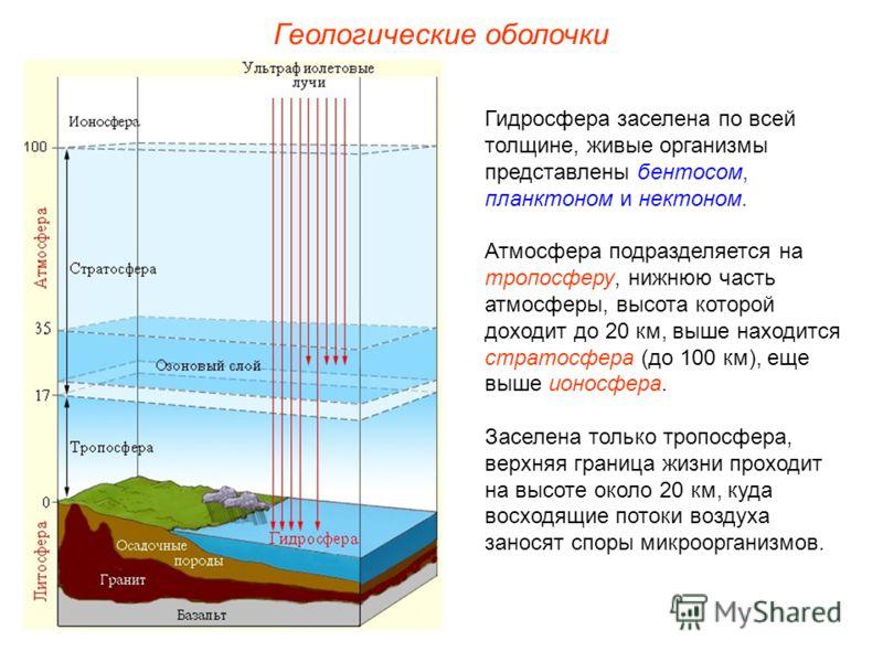 Гидросфера заселена по всей толщине, живые организмы представлены бентосом, планктоном и нектоном. Атмосфера подразделяется на тропосферу, нижнюю часть атмосферы, высота которой доходит до 20 км, выше находится стратосфера (до 100 км), еще выше ионос