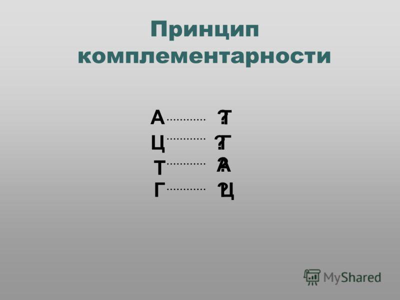 Принцип комплементарности А ………… ? Ц Г Т ? Т ? А Г ? Ц