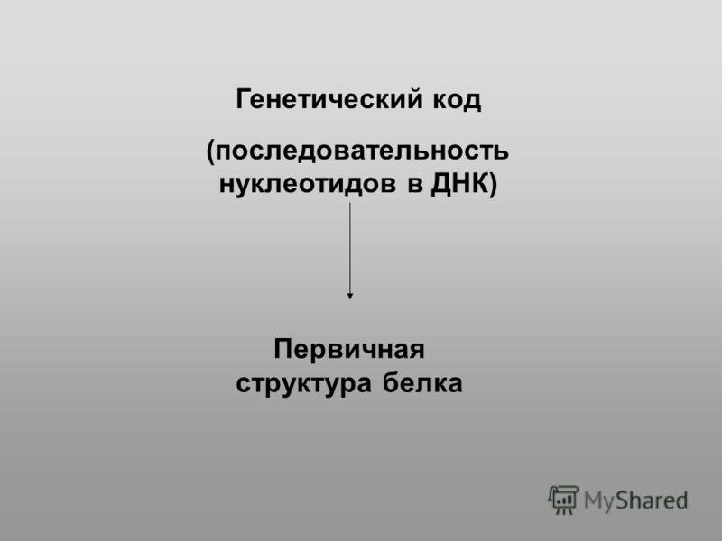 Генетический код (последовательность нуклеотидов в ДНК) Первичная структура белка