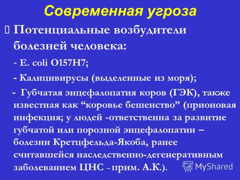 Современная угроза Потенциальные возбудители болезней человека: - E. coli O157H7; - Калицивирусы (выделенные из моря); - Губчатая энцефалопатия коров (ГЭК), также известная как коровье бешенство (прионовая инфекция; у людей -ответственна за развитие
