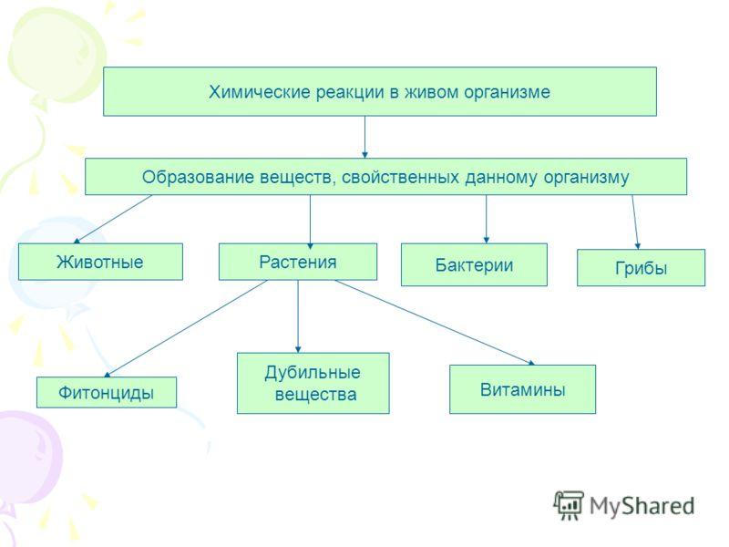 Животные Химические реакции в живом организме Образование веществ, свойственных данному организму Растения Бактерии Грибы Фитонциды Дубильные вещества Витамины
