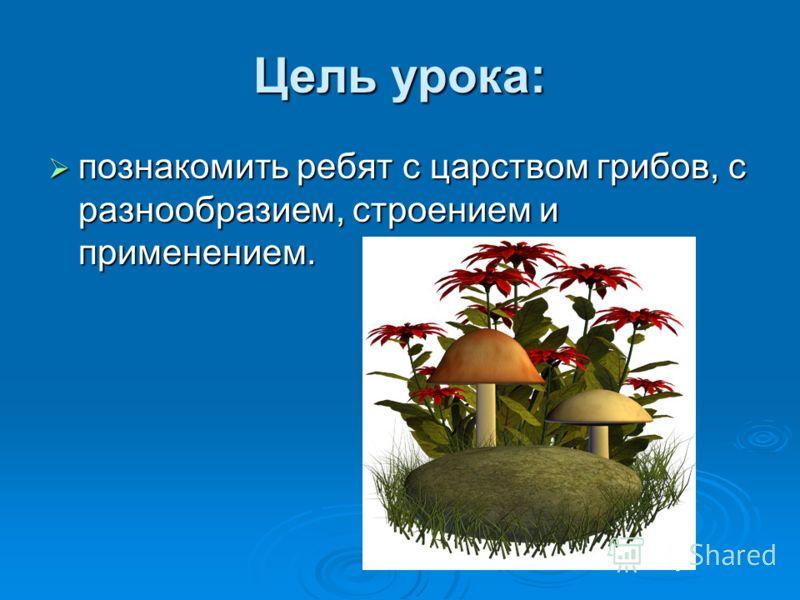 Цель урока: познакомить ребят с царством грибов, с разнообразием, строением и применением. познакомить ребят с царством грибов, с разнообразием, строением и применением.