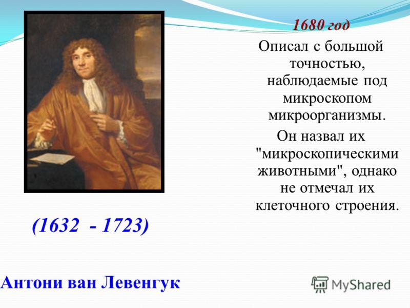 Антони ван Левенгук 1680 год Описал с большой точностью, наблюдаемые под микроскопом микроорганизмы. Он назвал их микроскопическими животными, однако не отмечал их клеточного строения. (1632 - 1723)