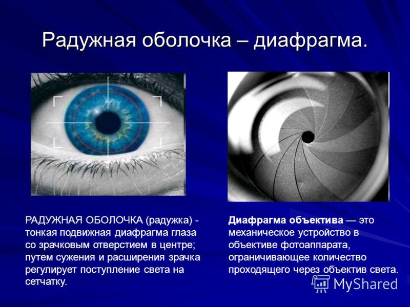 Радужная оболочка – диафрагма. Диафрагма объектива это механическое устройство в объективе фотоаппарата, ограничивающее количество проходящего через объектив света. РАДУЖНАЯ ОБОЛОЧКА (радужка) - тонкая подвижная диафрагма глаза со зрачковым отверстие