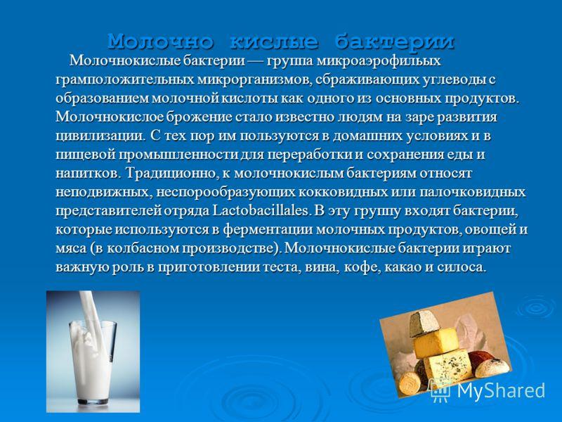 Презентация на тему Бактерии Друзья или враги Работу выполнили  3 Молочно