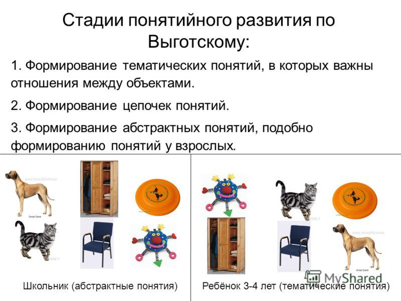 Стадии понятийного развития по Выготскому: 1. Формирование тематических понятий, в которых важны отношения между объектами. 2. Формирование цепочек понятий. 3. Формирование абстрактных понятий, подобно формированию понятий у взрослых. Школьник (абстр