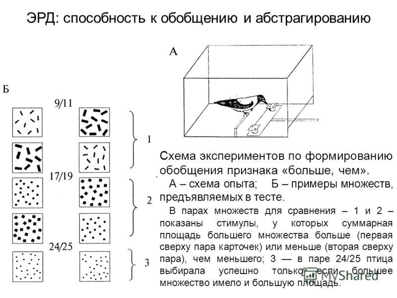 Схема экспериментов по формированию обобщения признака «больше, чем». А – схема опыта; Б – примеры множеств, предъявляемых в тесте. В парах множеств для сравнения – 1 и 2 – показаны стимулы, у которых суммарная площадь большего множества больше (перв