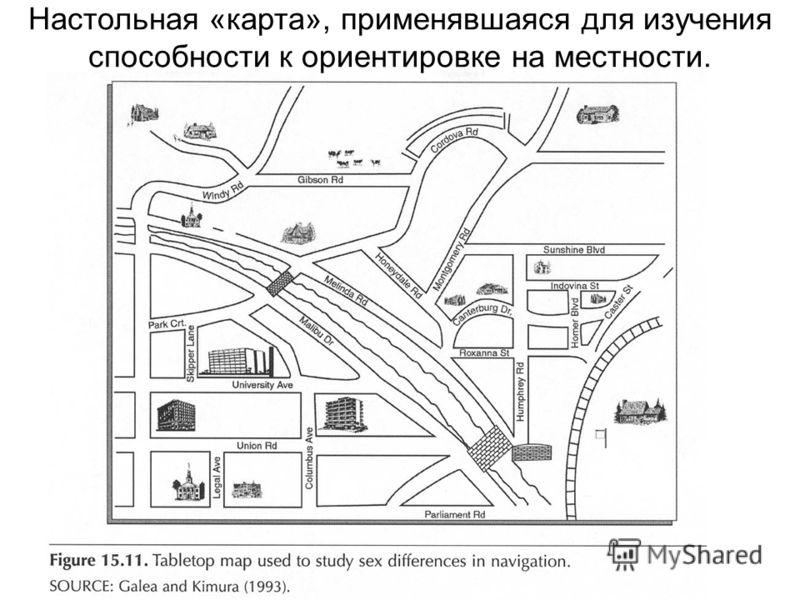 Настольная «карта», применявшаяся для изучения способности к ориентировке на местности.
