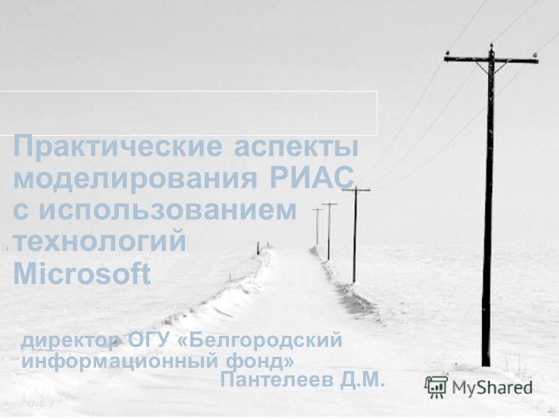 Практические аспекты моделирования РИАС с использованием технологий Microsoft директор ОГУ «Белгородский информационный фонд» Пантелеев Д.М.
