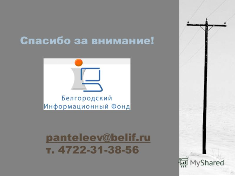 Спасибо за внимание! panteleev@belif.ru т. 4722-31-38-56