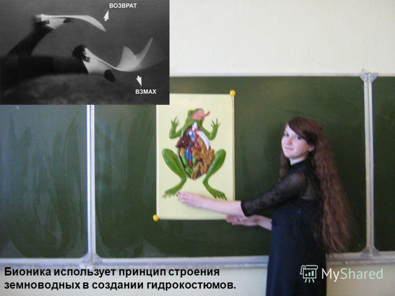 Задача урока: познакомиться с творениями природы и их аналогами, сделанными людьми; установить связь между строением и функциями живых организмов и развитием НТП.