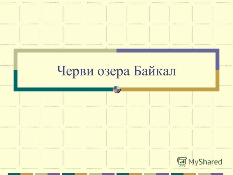 Черви озера Байкал