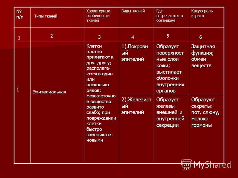 п/п п/п Типы тканей Типы тканей Характерные особенности тканей Виды тканей Где встречаются в организме Какую роль играют 1 2 3 4 5 5 6 6 1Эпителиальная Клетки плотно прилегают к друг другу; располага- ются в один или несколько рядов; межклеточно е ве