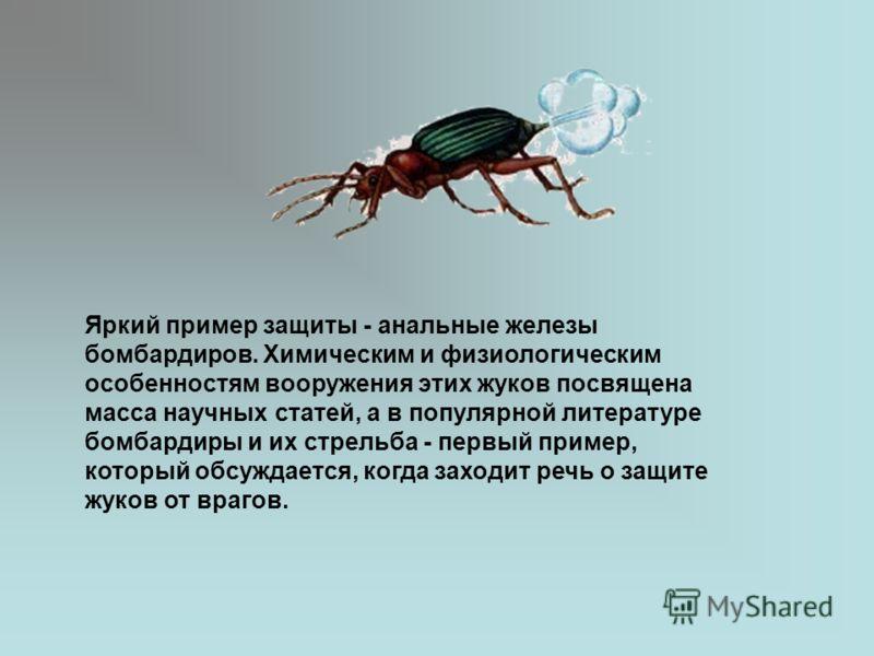 Яркий пример защиты - анальные железы бомбардиров. Химическим и физиологическим особенностям вооружения этих жуков посвящена масса научных статей, а в популярной литературе бомбардиры и их стрельба - первый пример, который обсуждается, когда заходит