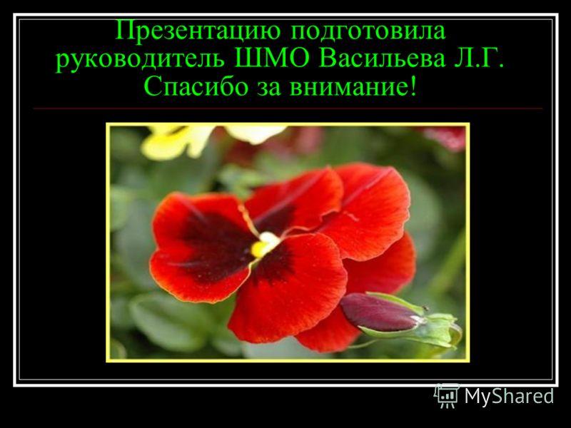 Презентацию подготовила руководитель ШМО Васильева Л.Г. Спасибо за внимание!