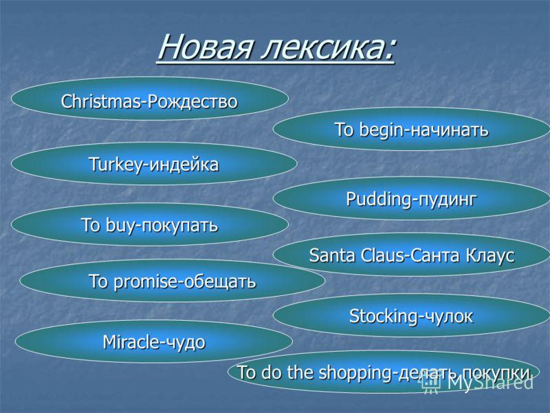 Новая лексика: Christmas-Рождество To begin-начинать Turkey-индейка Pudding-пудинг Santa Claus-Санта Клаус To buy-покупать Stocking-чулок To promise-обещать Miracle-чудо To do the shopping-делать покупки