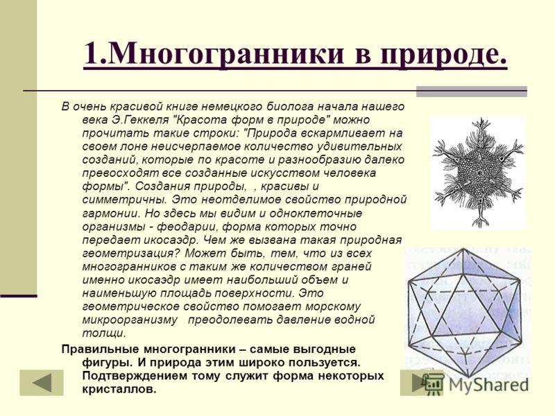 1.Многогранники в природе. В очень красивой книге немецкого биолога начала нашего века Э.Геккеля