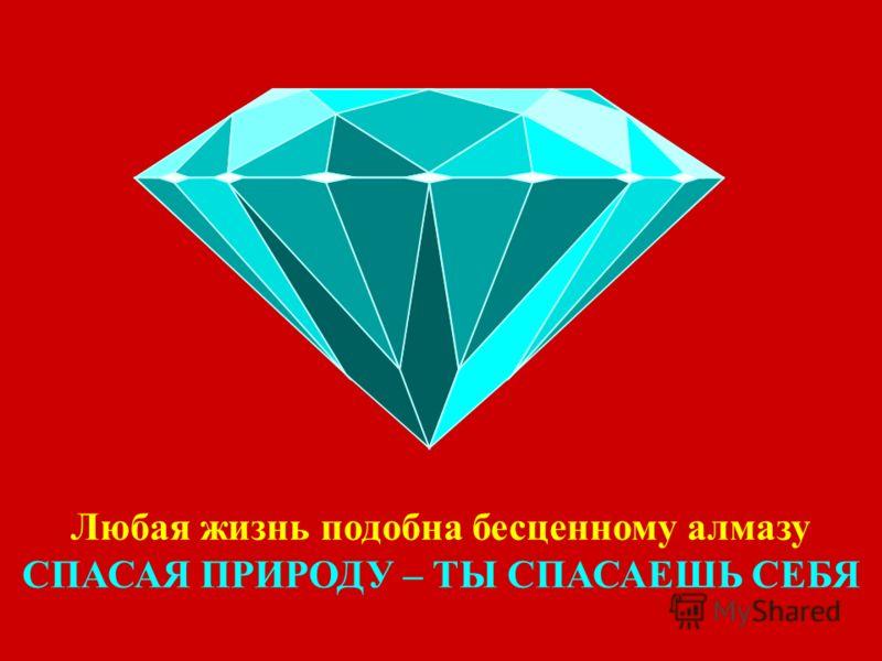 Любая жизнь подобна бесценному алмазу СПАСАЯ ПРИРОДУ – ТЫ СПАСАЕШЬ СЕБЯ