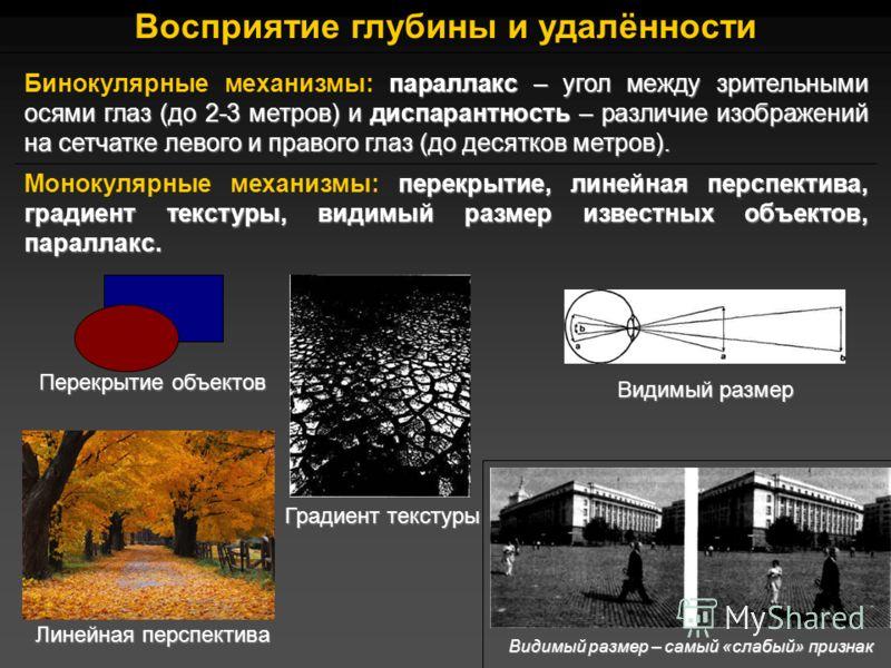 Восприятие глубины и удалённости параллакс – угол между зрительными осями глаз (до 2-3 метров) и диспарантность – различие изображений на сетчатке левого и правого глаз (до десятков метров). Бинокулярные механизмы: параллакс – угол между зрительными