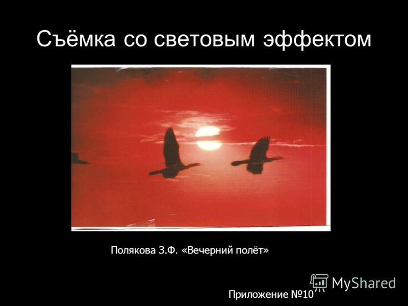 Съёмка со световым эффектом Полякова З.Ф. «Вечерний полёт» Приложение 10