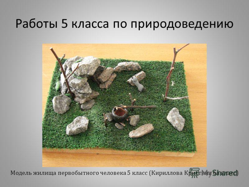 Работы 5 класса по природоведению Модель жилища первобытного человека 5 класс (Кириллова Кристина 6а класс)
