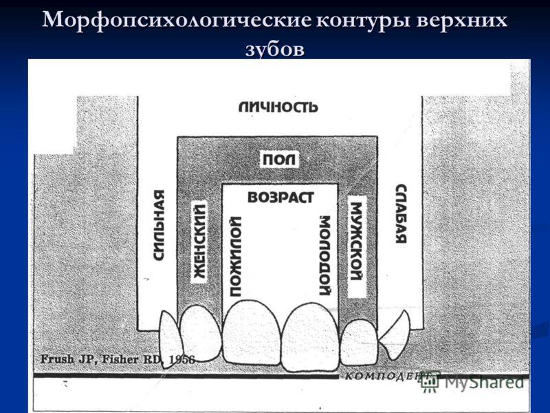 Морфопсихологические контуры верхних зубов