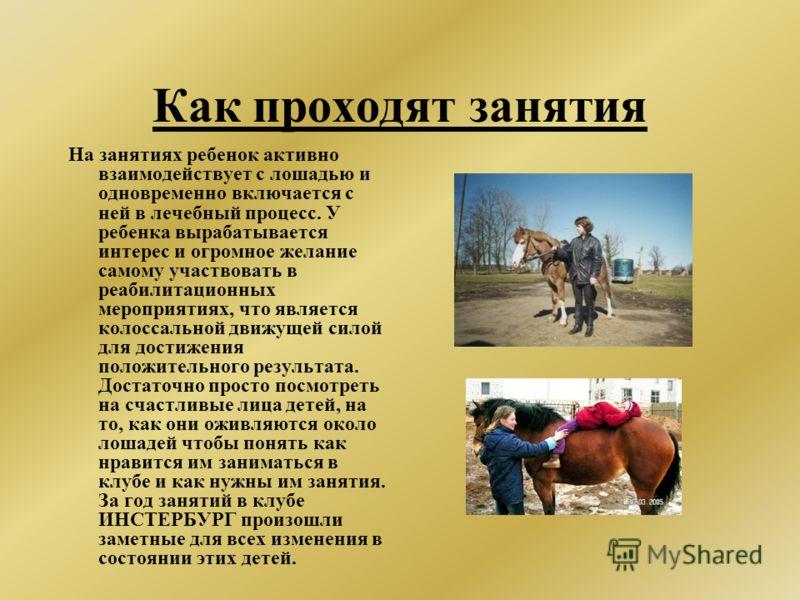 Как проходят занятия На занятиях ребенок активно взаимодействует с лошадью и одновременно включается с ней в лечебный процесс. У ребенка вырабатывается интерес и огромное желание самому участвовать в реабилитационных мероприятиях, что является колосс