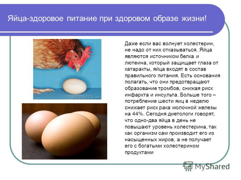 Яйца-здоровое питание при здоровом образе жизни! Даже если вас волнует холестерин, не надо от них отказываться. Яйца являются источником белка и лютеина, который защищает глаза от катаракты, яйца входят в состав правильного питания. Есть основания по