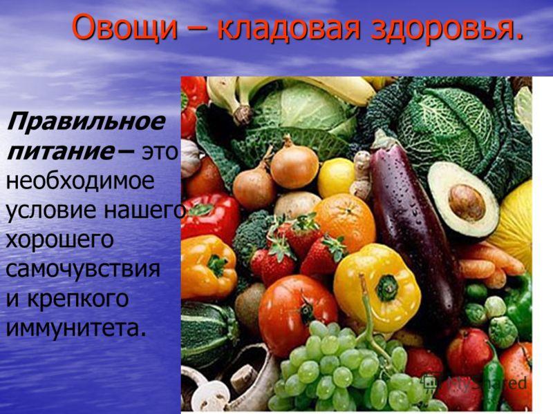 Овощи – кладовая здоровья. Овощи – кладовая здоровья. Правильное питание – это необходимое условие нашего хорошего самочувствия и крепкого иммунитета.