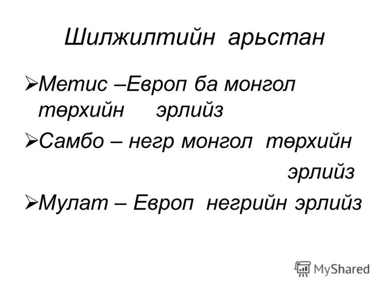 Шилжилтийн арьстан Метис –Европ ба монгол төрхийн эрлийз Самбо – негр монгол төрхийн эрлийз Мулат – Европ негрийн эрлийз