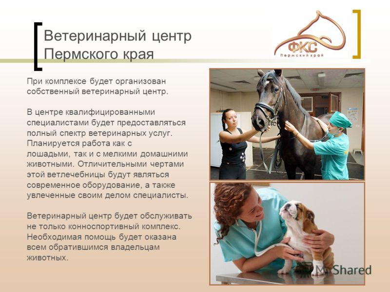 Ветеринарный центр Пермского края При комплексе будет организован собственный ветеринарный центр. В центре квалифицированными специалистами будет предоставляться полный спектр ветеринарных услуг. Планируется работа как с лошадьми, так и с мелкими дом