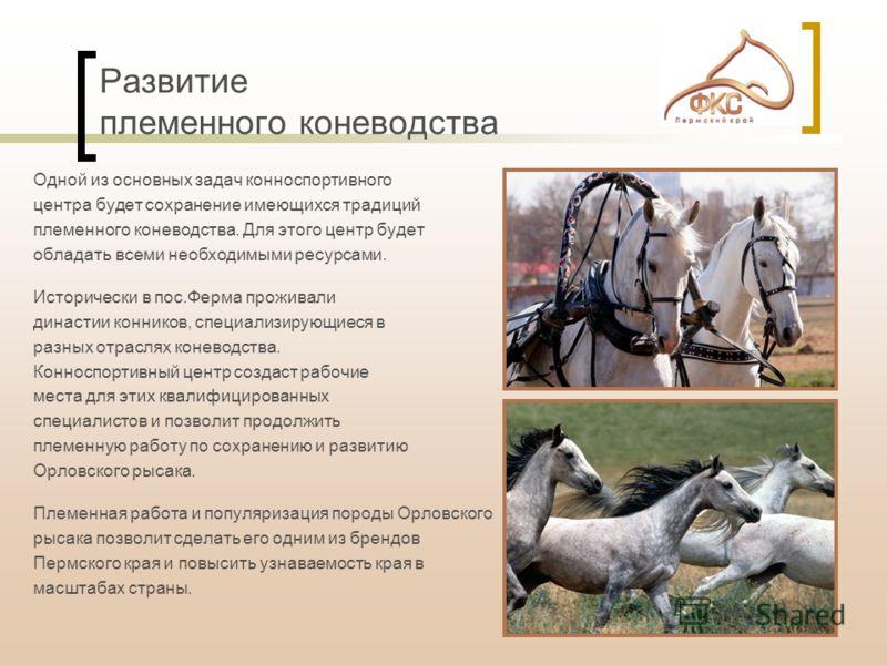 Одной из основных задач конноспортивного центра будет сохранение имеющихся традиций племенного коневодства. Для этого центр будет обладать всеми необходимыми ресурсами. Исторически в пос.Ферма проживали династии конников, специализирующиеся в разных
