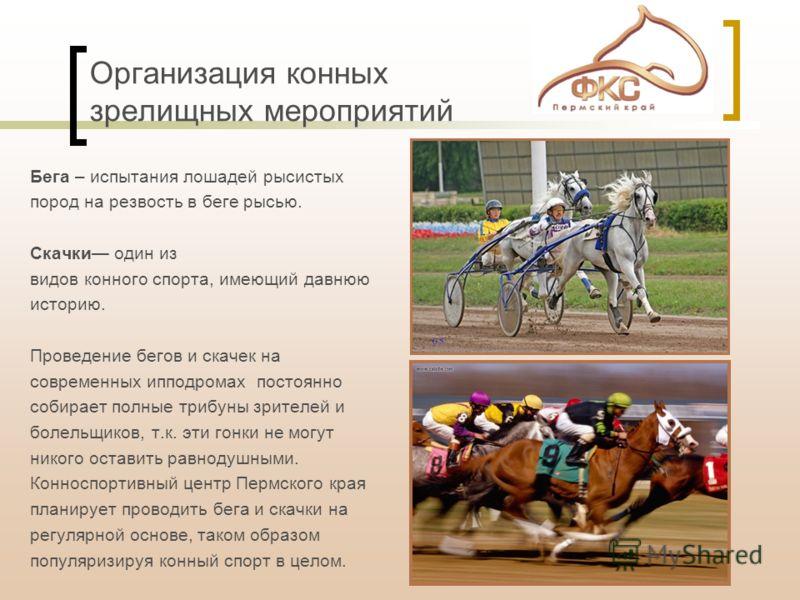 Организация конных зрелищных мероприятий Бега – испытания лошадей рысистых пород на резвость в беге рысью. Скачки один из видов конного спорта, имеющий давнюю историю. Проведение бегов и скачек на современных ипподромах постоянно собирает полные триб