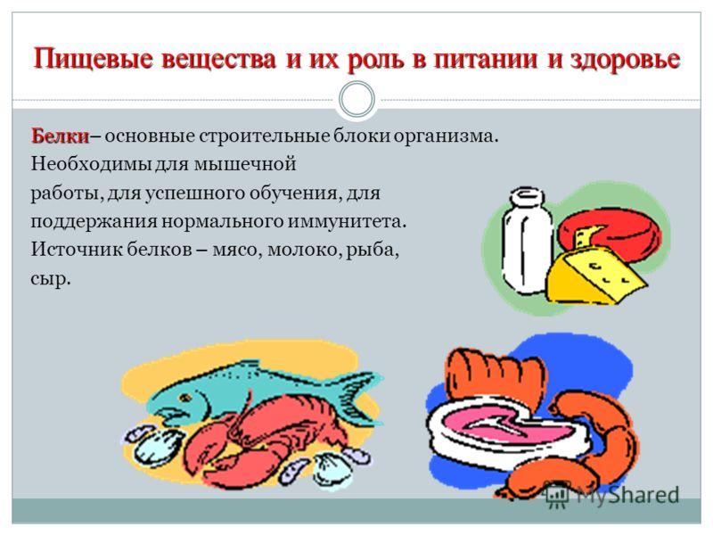 Пищевые вещества и их роль в питании и здоровье Белки Белки– основные строительные блоки организма. Необходимы для мышечной работы, для успешного обучения, для поддержания нормального иммунитета. Источник белков – мясо, молоко, рыба, сыр.