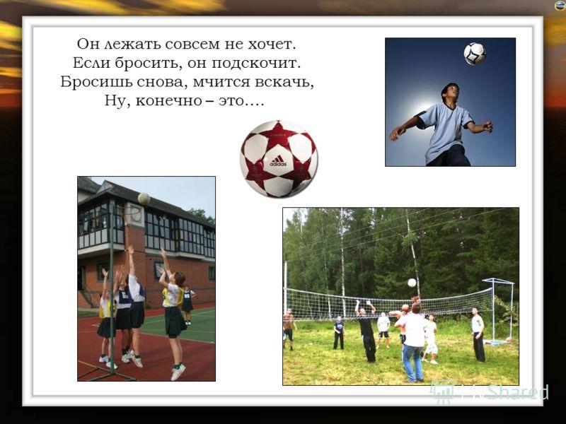 Спорт и Физкультура