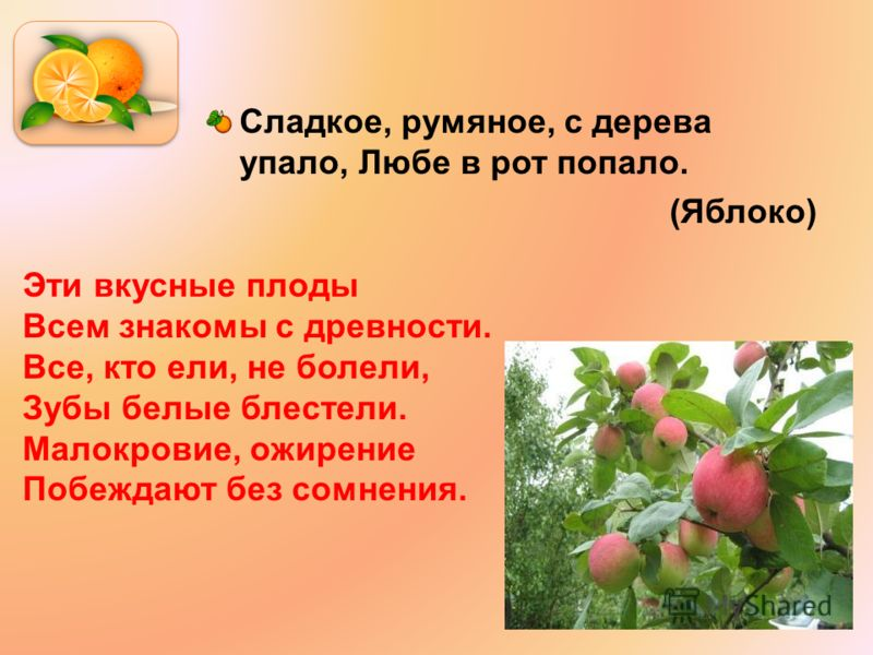 Сладкое, румяное, с дерева упало, Любе в рот попало. (Яблоко) Эти вкусные плоды Всем знакомы с древности. Все, кто ели, не болели, Зубы белые блестели. Малокровие, ожирение Побеждают без сомнения.