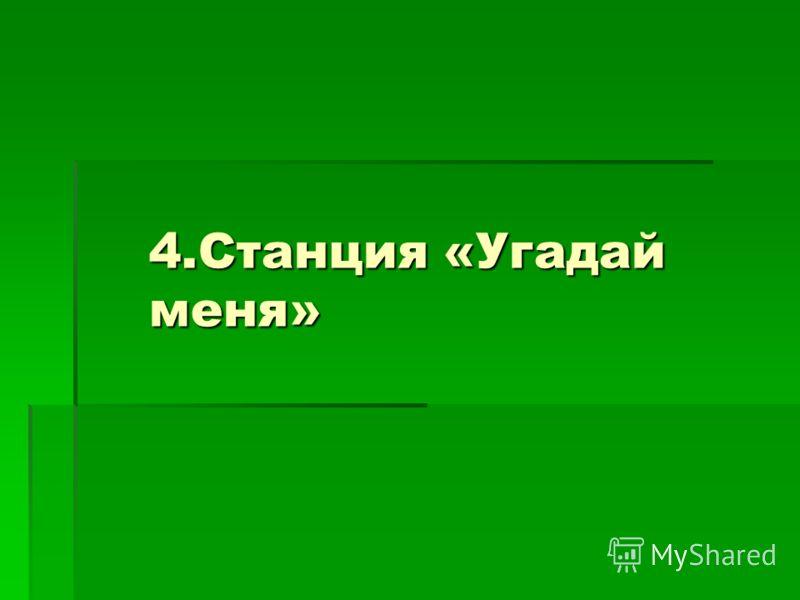 4.Станция «Угадай меня»