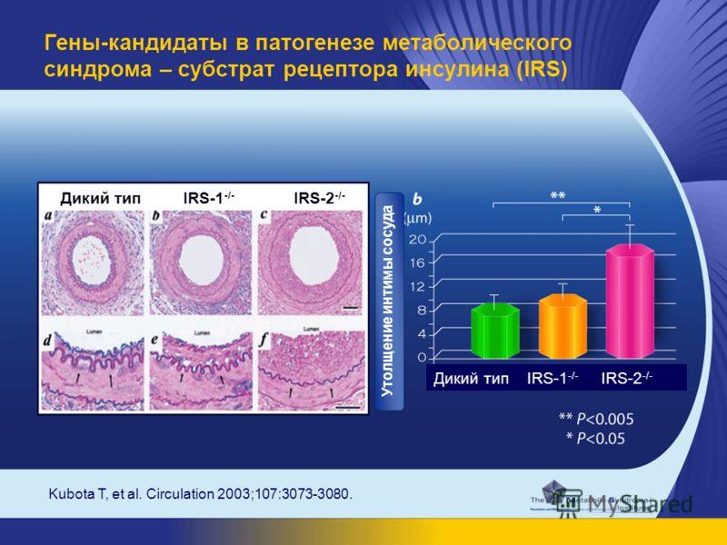 Kubota T, et al. Circulation 2003;107:3073-3080. Гены-кандидаты в патогенезе метаболического синдрома – субстрат рецептора инсулина (IRS) Дикий тип IRS-1 -/- IRS-2 -/- Утолщение интимы сосуда