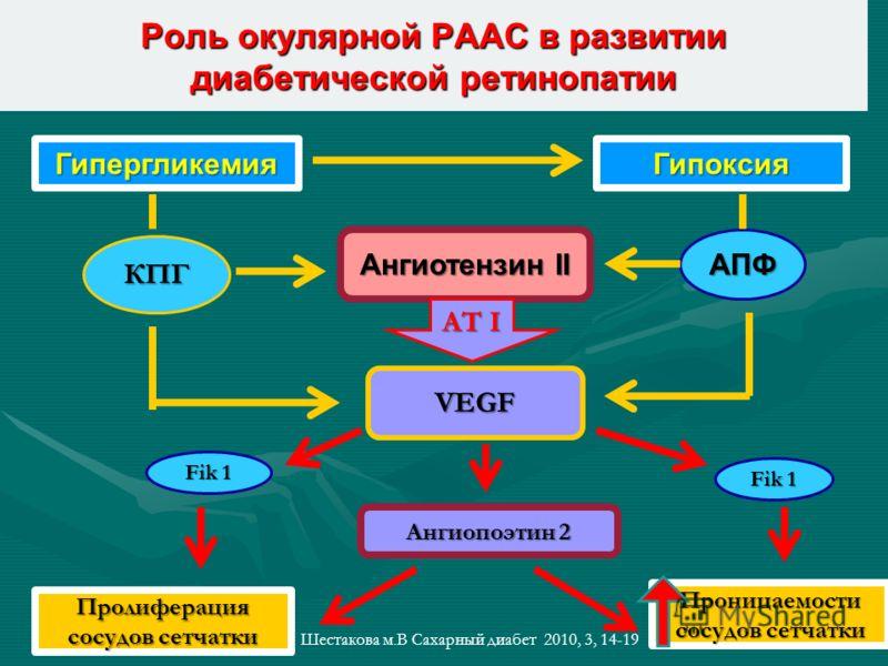 Роль окулярной РААС в развитии диабетической ретинопатии ГипергликемияГипоксия Ангиопоэтин 2 VEGF Ангиотензин II АПФ Fik 1 Пролиферация сосудов сетчатки Проницаемости сосудов сетчатки КПГ АТ I Шестакова м.В Сахарный диабет 2010, 3, 14-19