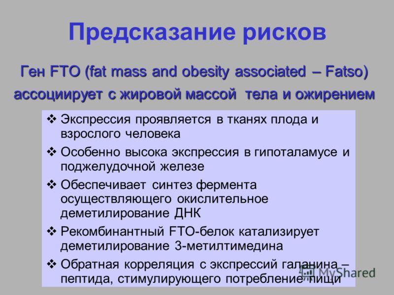 Ген FTO (fat mass and obesity associated – Fatso) ассоциирует с жировой массой тела и ожирением Экспрессия проявляется в тканях плода и взрослого человека Особенно высока экспрессия в гипоталамусе и поджелудочной железе Обеспечивает синтез фермента о