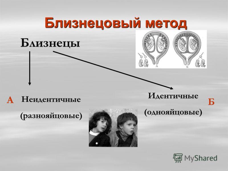 Близнецовый метод Близнецовый метод Близнецы Близнецы Неидентичные (разнояйцовые) Идентичные (однояйцовые) А Б
