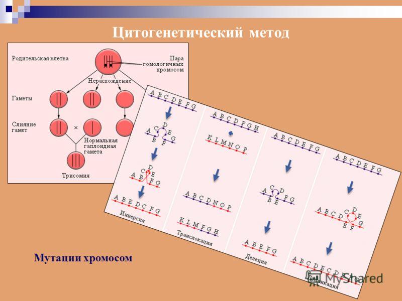 Цитогенетический метод Мутации хромосом