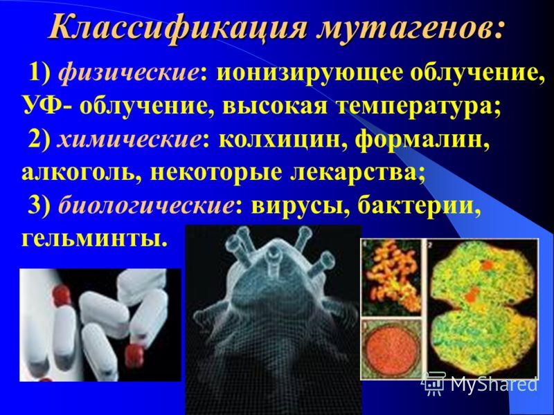 По локализации мутации: 1. Генеративные – это изменения в наследственном материале гамет. Такие мутации наследуются. 2. Соматические – это мутации, которые возникают в соматических клетках. Они не наследуются при половом размножении. По локализации м