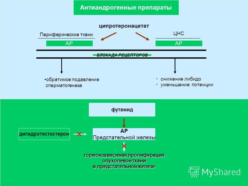 ципротеронацетат Периферические ткани ЦНС АР БЛОКАДА РЕЦЕПТОРОВ обратимое подавлениеобратимое подавление сперматогенеза сперматогенеза снижение либидо снижение либидо уменьшение потенции уменьшение потенции футамид АР Предстательной железы дигидротес