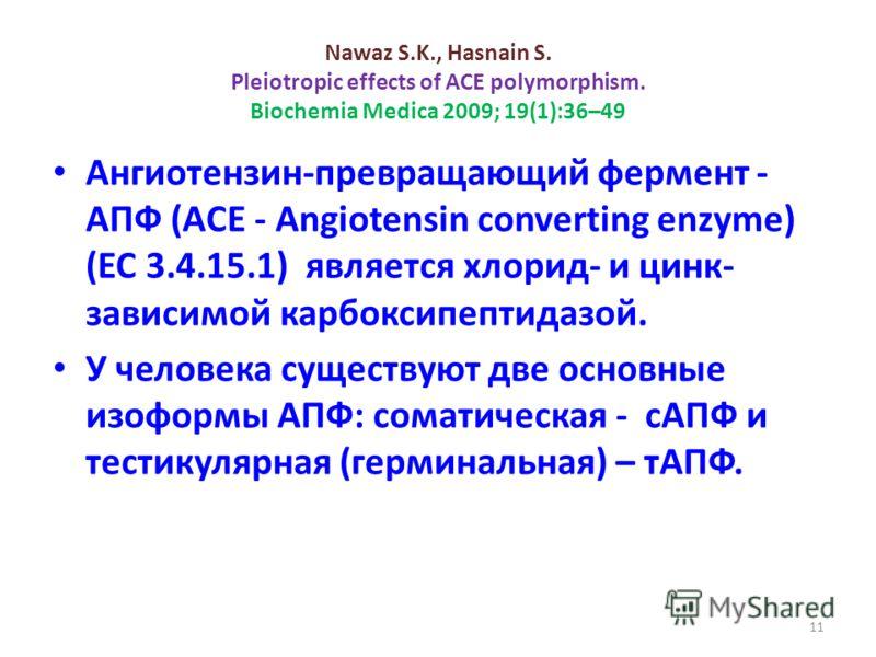 Nawaz S.K., Hasnain S. Pleiotropic effects of ACE polymorphism. Biochemia Medica 2009; 19(1):36–49 Ангиотензин-превращающий фермент - АПФ (ACE - Angiotensin converting enzyme) (EC 3.4.15.1) является хлорид- и цинк- зависимой карбоксипептидазой. У чел