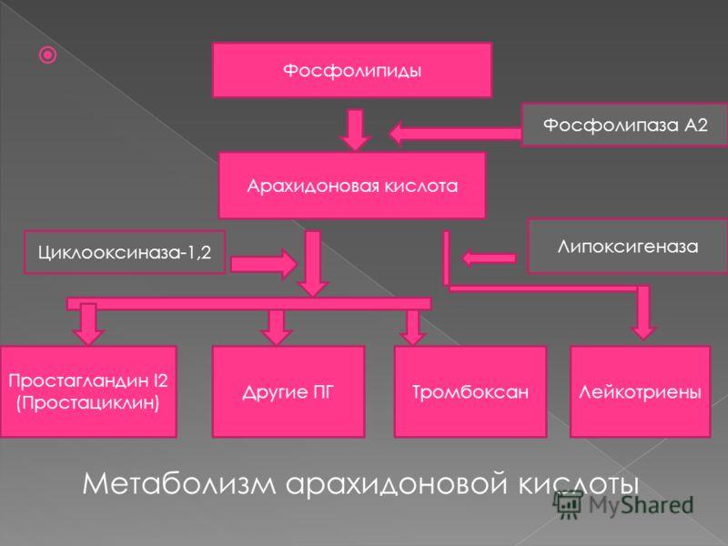 Метаболизм арахидоновой кислоты Фосфолипиды Арахидоновая кислота Простагландин I2 (Простациклин) Другие ПГТромбоксанЛейкотриены Фосфолипаза А2 Липоксигеназа Циклооксиназа-1,2