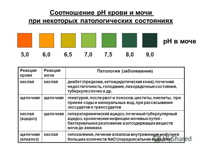 рН в моче 5,0 6,0 6,5 7,0 7,5 8,0 9,0 Соотношение рН крови и мочи при некоторых патологических состояниях Реакция крови Реакция мочи Патология (заболевания) кислая диабет (предкома, кетоацидотическая кома), почечная недостаточность, голодание, лихора
