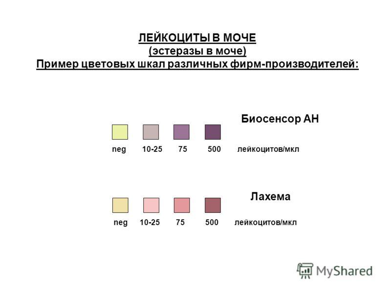ЛЕЙКОЦИТЫ В МОЧЕ (эстеразы в моче) Пример цветовых шкал различных фирм-производителей: neg 10-25 75 500 лейкоцитов/мкл Биосенсор АН Лахема