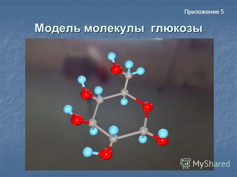 Модель молекулы глюкозы Приложение 5